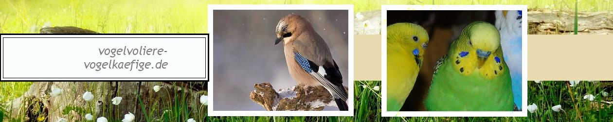 vogelvoliere-vogelkaefige.de